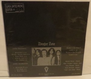 Danger Zone Danger Zone Demos BlueGrey Splatter Marbled Test Color LP back